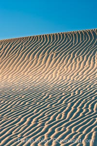 Ripples in sand dunes at sunset, California.  Winds reshape the dunes each day.  Early morning walks among the dunes can yield a look at sidewinder and kangaroo rats tracks the nocturnal desert animals leave behind. Stovepipe Wells, Death Valley National Park, California, USA, natural history stock photograph, photo id 15578