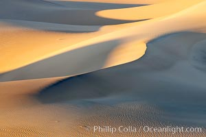 Sand Dunes, California.  Near Stovepipe Wells lies a region of sand dunes, some of them hundreds of feet tall. Death Valley National Park, USA, natural history stock photograph, photo id 15590