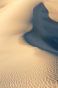 Sand Dunes, California.  Near Stovepipe Wells lies a region of sand dunes, some of them hundreds of feet tall. Stovepipe Wells, Death Valley National Park, California, USA, natural history stock photograph, photo id 15633