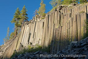 Devil's Postpile, a spectacular example of columnar basalt.  Once molten and under great pressure underground, the lava that makes up Devil's Postpile cooled evenly and slowly, contracting and fracturing into polygonal-sided columns.  The age of the formation is estimated between 100 and 700 thousand years old.  Sometime after the basalt columns formed, a glacier passed over the formation, cutting and polishing the tops of the columns.  The columns have from three to seven sides, varying because of differences in how quickly portions of the lava cooled. Devils Postpile National Monument, California, USA, natural history stock photograph, photo id 23266