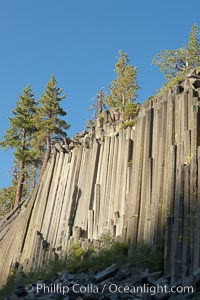 Devil's Postpile, a spectacular example of columnar basalt.  Once molten and under great pressure underground, the lava that makes up Devil's Postpile cooled evenly and slowly, contracting and fracturing into polygonal-sided columns.  The age of the formation is estimated between 100 and 700 thousand years old.  Sometime after the basalt columns formed, a glacier passed over the formation, cutting and polishing the tops of the columns.  The columns have from three to seven sides, varying because of differences in how quickly portions of the lava cooled. Devils Postpile National Monument, California, USA, natural history stock photograph, photo id 23283