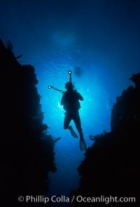Diver and camera, Roatan
