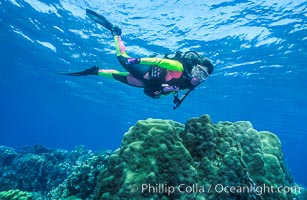 Diver and coral reef, Roatan