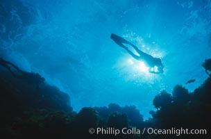 Image 00251, Diver silhouette. Guadalupe Island (Isla Guadalupe), Baja California, Mexico