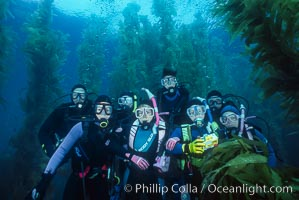 Divers amidst kelp, San Clemente Island