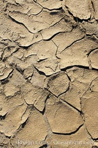 Dried mud, scorched earth, cracks from long-dried rain puddles, Anza-Borrego Desert State Park, Borrego Springs, California