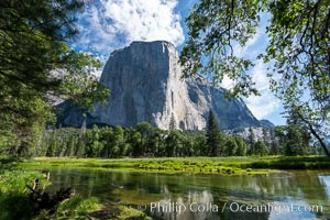 El Capitan and the Merced River in spring, Yosemite National Park