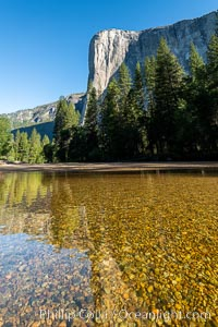 El Capitan and the Merced River, early morning, Yosemite National Park