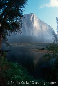 El Capitan and Merced River, morning. El Capitan, Yosemite National Park, California, USA, natural history stock photograph, photo id 02331