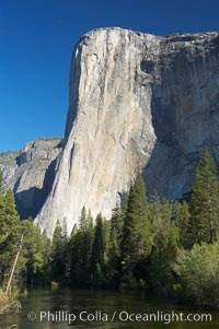 El Capitan rises above the Merced River, Yosemite Valley. El Capitan, Yosemite National Park, California, USA, natural history stock photograph, photo id 16101