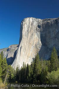 El Capitan rises above the Merced River, Yosemite Valley. El Capitan, Yosemite National Park, California, USA, natural history stock photograph, photo id 16103