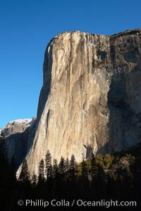 El Capitan eastern face, sunrise. El Capitan, Yosemite National Park, California, USA, natural history stock photograph, photo id 22745