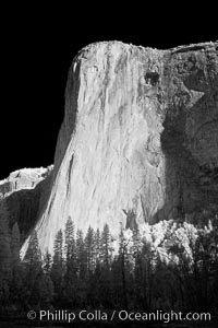 El Capitan eastern face, sunrise. El Capitan, Yosemite National Park, California, USA, natural history stock photograph, photo id 22770