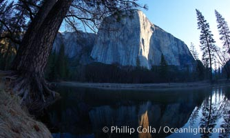 El Capitan, rises above the Merced River at sunrise, Yosemite National Park, California