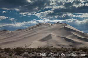 "Eureka Valley Sand Dunes.  The Eureka Dunes are California's tallest sand dunes, and one of the tallest in the United States.  Rising 680' above the floor of the Eureka Valley, the Eureka sand dunes are home to several endangered species, as well as ""singing sand"" that makes strange sounds when it shifts, Death Valley National Park"