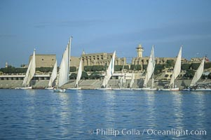 Feluccas, traditional Egyptian sailboats, sail the Nile River with Karnak Temple in the background, Luxor