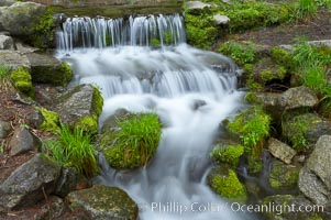 Fern Springs, a small natural spring in Yosemite Valley near the Pohono Bridge, trickles quietly over rocks as it flows into the Merced River. Yosemite National Park, California, USA, natural history stock photograph, photo id 12653