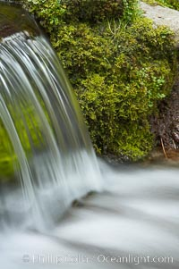 Fern Springs, a small natural spring in Yosemite Valley near the Pohono Bridge, trickles quietly over rocks as it flows into the Merced River. Yosemite Valley. Yosemite National Park, California, USA, natural history stock photograph, photo id 16086