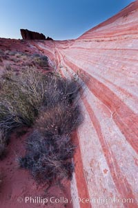 The Fire Wave, a beautiful sandstone formation exhibiting dramatic striations, striped layers in the geologic historical record. Valley of Fire State Park, Nevada, USA, natural history stock photograph, photo id 26488