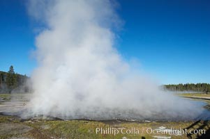 Firehole Lake creates a wall of steam in the early morning, Lower Geyser Basin, Yellowstone National Park, Wyoming