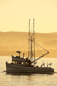 Fishing boat in sunrise golden light, departing the Monterey Harbor