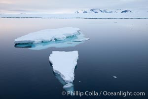 Floating ice and glassy water, sunset, Paulet Island