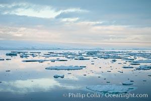Floating ice and glassy water, sunset, Paulet Island