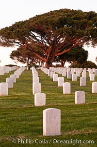 Image 26584, Fort Rosecrans National Cemetery. San Diego, California, USA