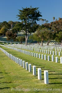 Fort Rosecrans National Cemetery. San Diego, California, USA, natural history stock photograph, photo id 26597