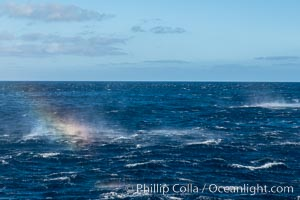 Gale winds, rainbow forms in sea smoke, Guadalupe Island (Isla Guadalupe)
