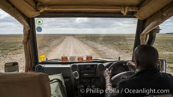 Game drive with safari guide, Amboseli National Park, Kenya