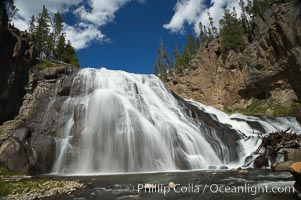 Image 13285, Gibbon Falls drops 80 feet through a deep canyon formed by the Gibbon River. Although visible from the road above, the best vantage point for viewing the falls is by hiking up the river itself. Gibbon River, Yellowstone National Park, Wyoming, USA, Phillip Colla, all rights reserved worldwide. Keywords: environment, gibbon falls, gibbon river, landscape, national parks, nature, outdoors, outside, river, river waterfall, scene, scenery, scenic, usa, water, waterfall, world heritage sites, wyoming, yellowstone, yellowstone national park, yellowstone park.