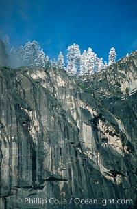Glacier Point and trees, Yosemite National Park, California