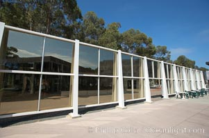 Glass structure and eucalyptus trees, Mandell Weiss Forum, University of California San Diego, UCSD