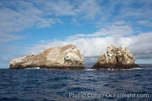 Gordon Rocks, a spectacular dive site near South Plaza Island