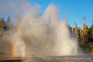 A rainbow forms in the mist from Grand Geyser and Vent Geyser.  Grand Geyser is a fountain-type geyser reaching 200 feet in height and lasting up to 12 minutes.  Grand Geyser is considered the tallest predictable geyser in the world, erupting about every 12 hours.  It is often accompanied by burst or eruptions from Vent Geyser and Turban Geyser just to its left.  Upper Geyser Basin, Yellowstone National Park, Wyoming