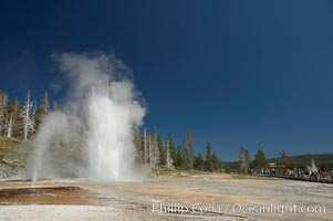 A crowd admires a simultaneous eruption of Grand Geyser (right) with Vent Geyser (left).  Grand Geyser is a fountain-type geyser reaching 200 feet in height and lasting up to 12 minutes.  Grand Geyser is considered the tallest predictable geyser in the world, erupting about every 12 hours.  It is often accompanied by burst or eruptions from Vent Geyser and Turban Geyser just to its left.  Upper Geyser Basin, Yellowstone National Park, Wyoming