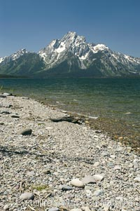 Driftwood along the shoreline of Jackson Lake with Mount Moran in the background. Grand Teton National Park, Wyoming, USA, natural history stock photograph, photo id 07415