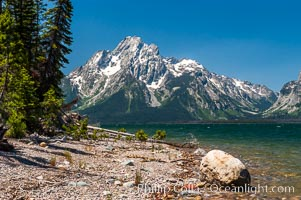 Driftwood along the shoreline of Jackson Lake with Mount Moran in the background. Grand Teton National Park, Wyoming, USA, natural history stock photograph, photo id 07417