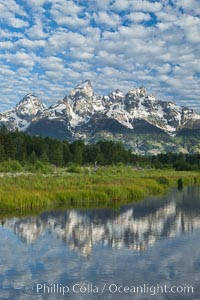 The Grand Tetons, reflected in the glassy waters of the Snake River at Schwabacher Landing, on a beautiful summer morning, Grand Teton National Park, Wyoming