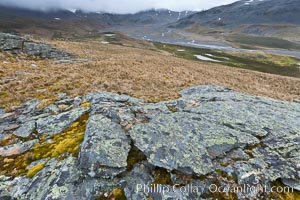 Grassy windy highlands and rocks, overlooking alluvial floodplain formed by glacier runoff near Stromness Bay, Stromness Harbour