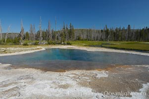 Green Spring, Black Sand Basin, Yellowstone National Park, Wyoming