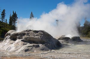 Grotto Geyser (left) and Rocket Geyser (right) erupt.  Upper Geyser Basin. Yellowstone National Park, Wyoming, USA, natural history stock photograph, photo id 13402