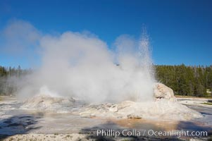 Grotto Geyser (right) and Rocket Geyser (left) erupt.  Upper Geyser Basin, Yellowstone National Park, Wyoming