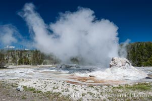 Grotto Geyser, Yellowstone National Park. Upper Geyser Basin, Wyoming, USA, natural history stock photograph, photo id 07204
