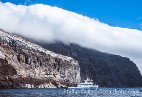 Guadalupe Island near Pilot Rock, Mexico, Guadalupe Island (Isla Guadalupe)