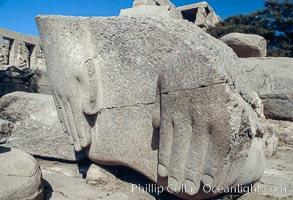 Hands of Ozymandias, Ramesseum. Luxor, Egypt, natural history stock photograph, photo id 02598