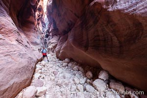 Hiker in Buckskin Gulch.  A hiker considers the towering walls and narrow passageway of Buckskin Gulch, a dramatic slot canyon forged by centuries of erosion through sandstone.  Buckskin Gulch is the worlds longest accessible slot canyon, running from the Paria River toward the Colorado River.  Flash flooding is a serious danger in the narrows where there is no escape. Paria Canyon-Vermilion Cliffs Wilderness, Arizona, USA, natural history stock photograph, photo id 20712