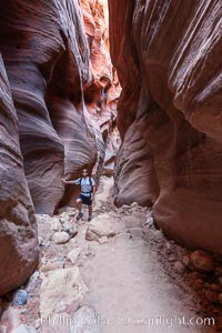 Hiker in Buckskin Gulch.  A hiker considers the towering walls and narrow passageway of Buckskin Gulch, a dramatic slot canyon forged by centuries of erosion through sandstone.  Buckskin Gulch is the worlds longest accessible slot canyon, running from the Paria River toward the Colorado River.  Flash flooding is a serious danger in the narrows where there is no escape. Buckskin Gulch, Paria Canyon-Vermilion Cliffs Wilderness, Arizona, USA, natural history stock photograph, photo id 20729