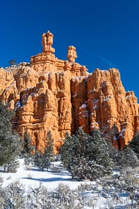 Hoodoos, walls and sandstone spires. Red Canyon, Dixie National Forest, Utah, USA, natural history stock photograph, photo id 18086